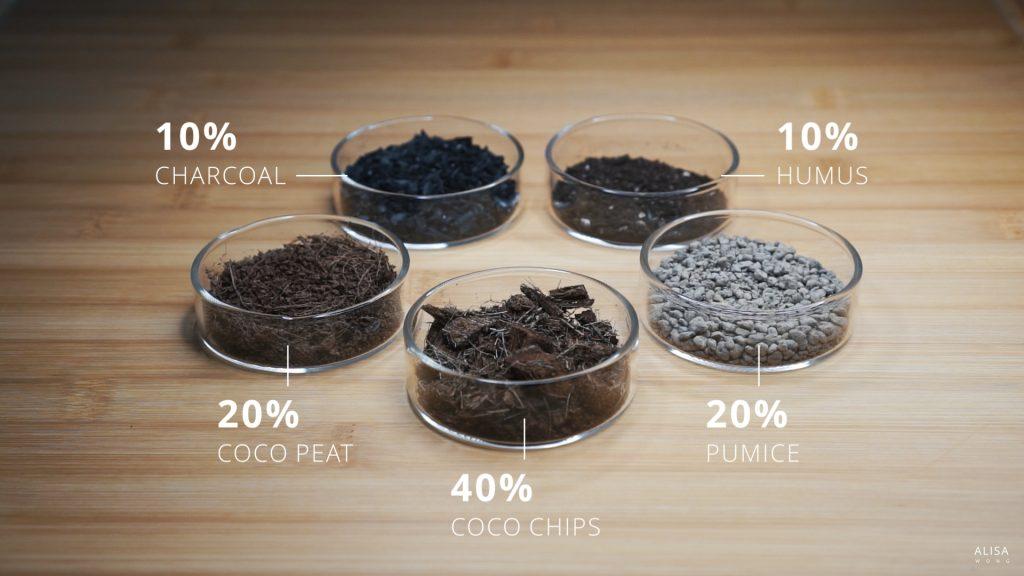 Aroid potting mix ingredients